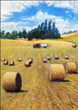 Kinkell Barley Field by John Rowland, Painting, Pastel on Paper