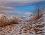 Tarn Hows by John Rowland, Painting, Pastel