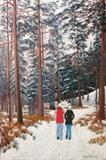 Winter in Glen Tanar 1 by John Rowland, Painting, Pastel on Paper
